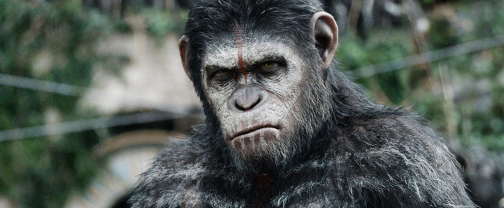 Andy Serkis, Planet of the Apes (Photo)