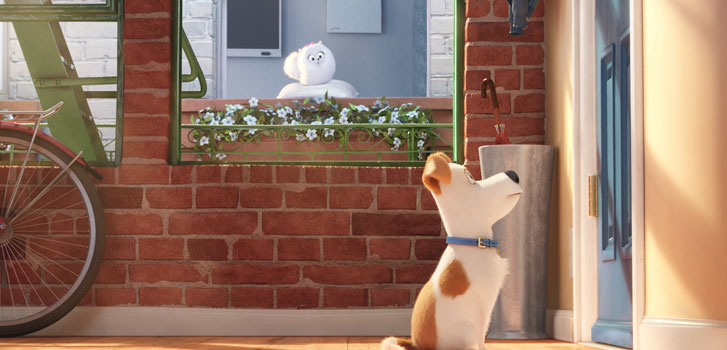 Find out what pets do when humans aren't around in the new trailer for The Secret Life of Pets