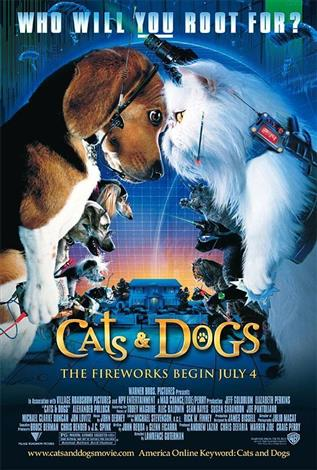 Cats & Dogs - A Family Favourites Presentation
