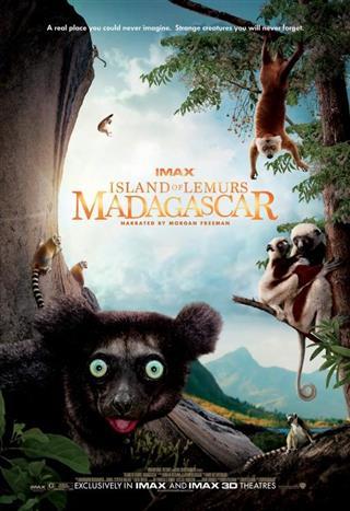 Island Of Lemurs: Madagascar (IMAX 3D)