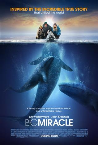 Big Miracle - A Family Favourites Presentation