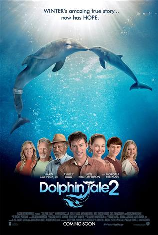 Dolphin Tale 2 - A Family Favourites Presentation