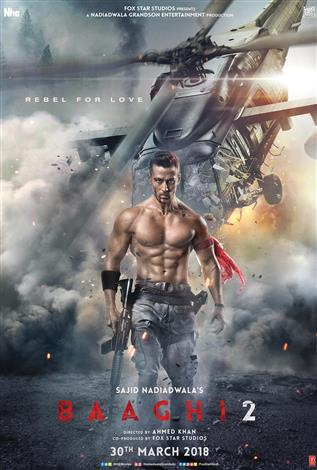Baaghi 2 (Hindi w/e.s.t.)