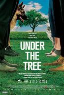 Under The Tree (Icelandic w/e.s.t.)