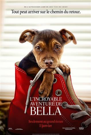 L'incroyable aventure de Bella - Les films en famille