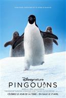 Pingouins - L'Expérience IMAX