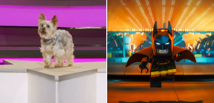 The Lego Batman Movie, Pup Star, and more in our August Family Favourites!
