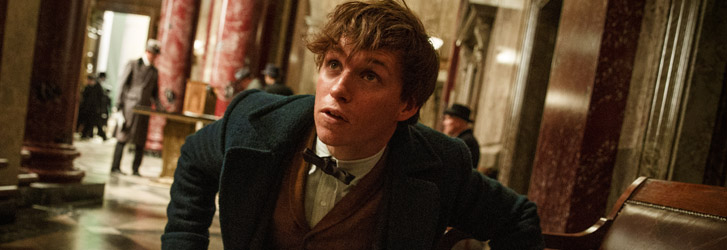 eddie redmayne, fantastic beasts and where to find them, image