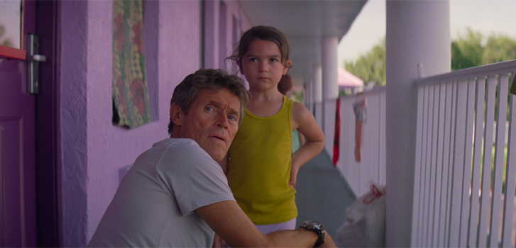 5 reasons to see The Florida Project