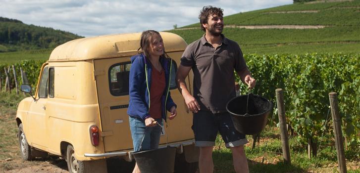 5 raisons d'aller voir Retour en Bourgogne